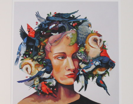 Plumage - Jenny Keith